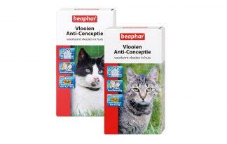 Teken- en vlooienbestrijding bij katten