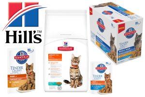 Hill's kattenvoeding