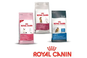 Royal Canin feline care health nutrition
