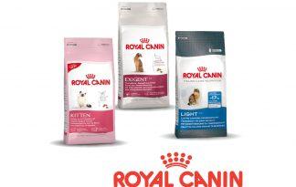 Royal Canin feline care health nutrition