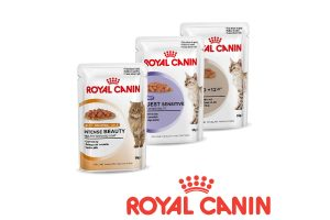 Royal Canin wet feline nutrition