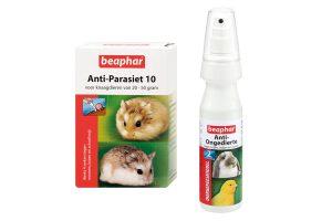 Ongedierte & parasieten knaagdieren