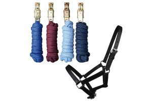 Halsters & touwen