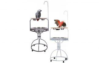Papegaaienstandaarden