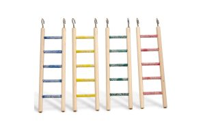 Ladders & netten