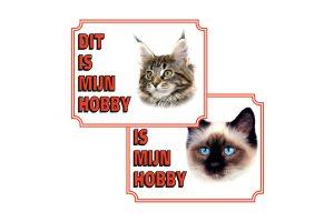 Waakborden voor katten