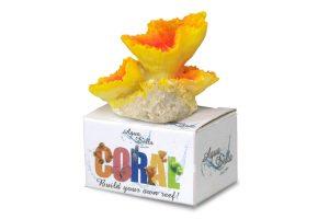 EBI Aqua Della Coral Module S Encrusting Fungi