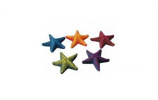 EBI Aqua Della Mini Star-Fish