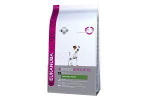 Eukanuba Ras Jack Russel Terrier