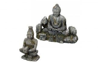 EBI Aqua Della Buddha