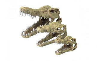 EBI Aqua Della Crocodile Head