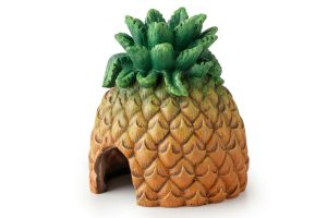 Exo Terra ananas schuilgrot