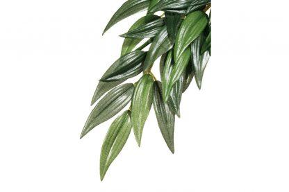 Exo Terra Hanging Rainforest Plant Rucus zijde