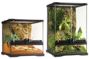 Exo Terra Natural Terrarium Mini