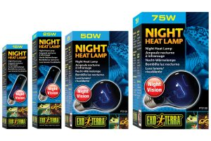 Exo Terra Night Heat Lamp maanlichtlamp