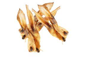 Gedroogde konijnenoren zijn een heerlijke snack voor je hond. Een 100% natuurlijke snack afkomstig van het konijn. Deze zachte oren zijn gedroogd en zeer geschikt voor honden met allergieën. Een gezonde en lekkere snack voor je hond.