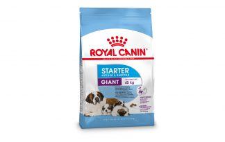 Royal Canin Starter Giant Moter & Babydog