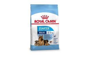 Royal Canin Starter Maxi Mother & Babydog