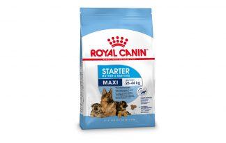 Royal Canin Starter Maxi Mother & Babydog