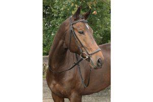 Harry's Horse hoofdstel Bronze met lage neusriem