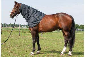Harry's Horse halsstuk Thor ebony (donkermarine)