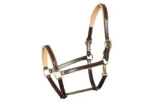 Harry's Horse halster leder Elegance bruin