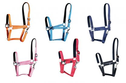 Harry's Horse halster Padded