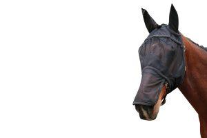 Harry's Horse vliegenmasker met oren en neusstuk Zwart