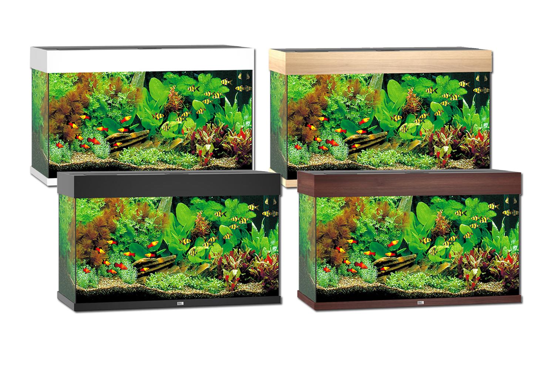 juwel rio 125 aquarium. Black Bedroom Furniture Sets. Home Design Ideas