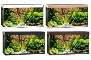 Juwel Rio 300 aquaria