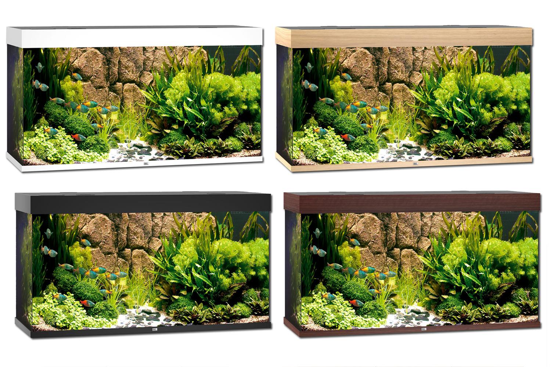 juwel rio 300 aquarium. Black Bedroom Furniture Sets. Home Design Ideas