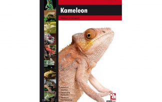 Kameleon (F.J. Schonenberg)