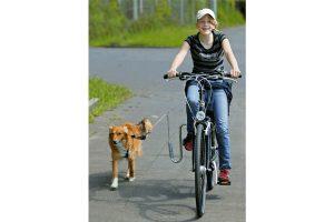 karlie-Flamingo fietsbeugel Doggy Guide