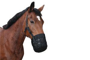 QHP Graasmasker ofwel Grazing Muzzle