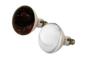 Kerbl infrarood warmtelamp hard glas