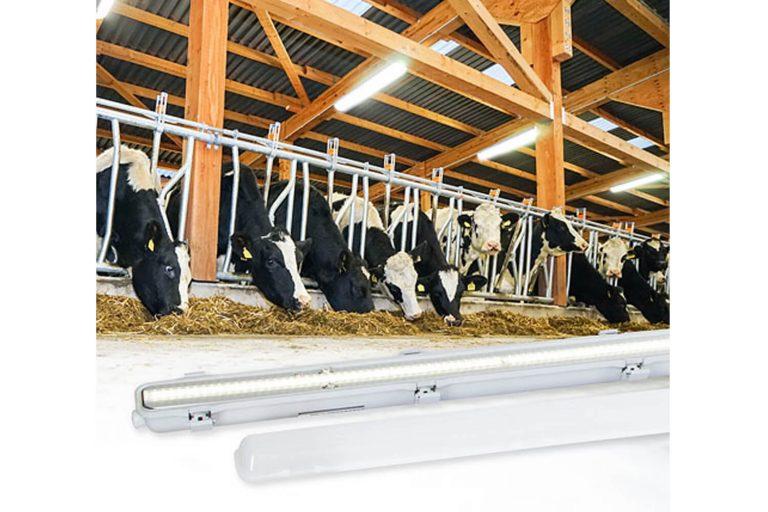Kerbl FarmStar LED-unit