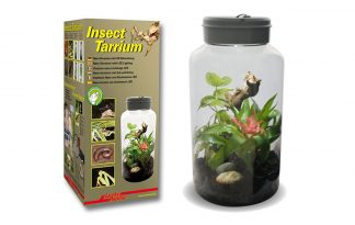 Lucky Reptile Insect Tarrium nano-terrarium