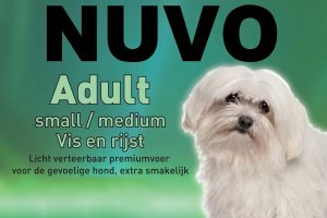 Nuvo Vis en Rijst small/medium