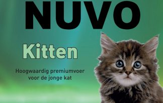 Nuvo Premium kitten