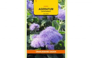 Oranjeband Zaden ageratum houstonianum Blue Mink