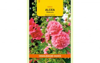Oranjeband Zaden alcea rosea Summer Carnival