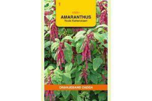 Oranjeband Zaden amaranthus caudatus Rood