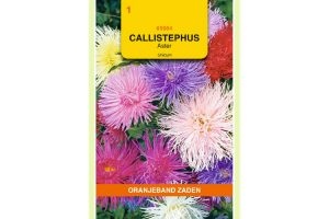 Oranjeband Zaden callistephus chinensis Unicum gemengd
