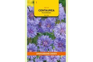 Oranjeband Zaden centaurea cyanus Blue Ball