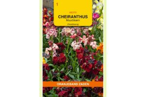 Oranjeband Zaden cheiranthus cheirii Enkele gemengd