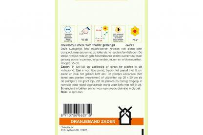 Oranjeband Zaden cheiranthus cheirii Tom Thumb gemengd