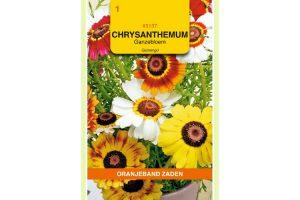 Oranjeband Zaden chrysanthemum carinatum Enkele gemengd