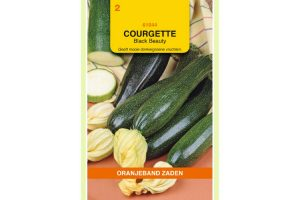 Oranjeband Zaden courgette Black Beauty