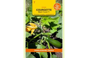 Oranjeband Zaden courgette Black Forest F1