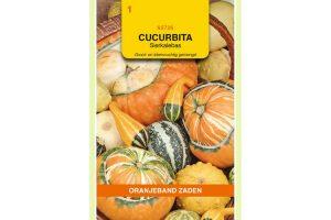 Oranjeband Zaden cucurbita pepo Groot en klein gemengd